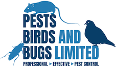 Pests, Birds & Bugs Pest Control | New Forest, Southampton & Christchurch
